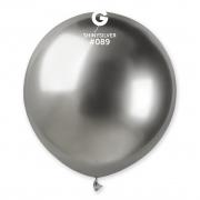 19-Shiny-Silver